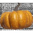 Pumpkin Patch Gourd 01