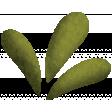 Fallish - leaf