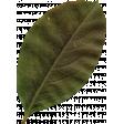 Autumn Wind Elements - leaf 07