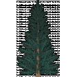Winter Elements 04 Tree