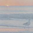 Sunset Beach Paper