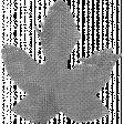 Burlap Leaf Template 2