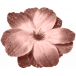 Spring Sparkle Lt Coral Flower