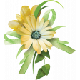 Yellow Flower Cluster