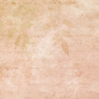 Peach foliage paper