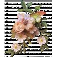 Floral cCluster 4