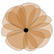 Brown Flower
