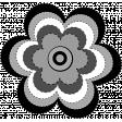 Gray Black White Flower