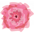 Pink Billowy Flower