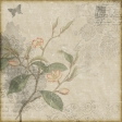 Daily Vintage Background 01