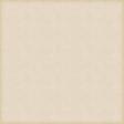 Vintage Paper Styles Set 01 - Paper Texture 04