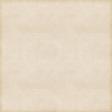 Vintage Paper Styles Set 01 - Paper Texture 05