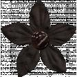 Spookalicious - Little Black Flower