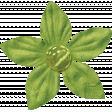 Spookalicious - Little Green Flower