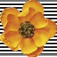 Spookalicious - Orange Large Flower