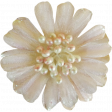 Jane - Cream Flower With Pearls