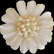Jane - Cream Flower With Pearls