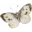 Jane - Vintage Butterfly Sticker