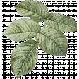 Jane - Vintage Leafy Branch