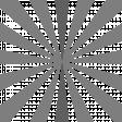 Sunburst Layered Overlay/Paper Templates - Template 04