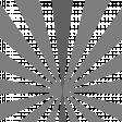 Sunburst Layered Overlay/Paper Template - Template 03