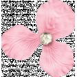 Shine - Little Pink Flower
