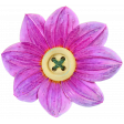pink Button Flower