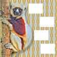 Lemur overlay