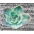 Fresh Start Elements - Succulent