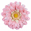 The Good Life: August - Pink Flower