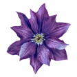 The Good Life: August - Purple Flower