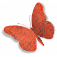 Folded Butterfly- with shadow