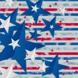 USA Background 1