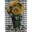 Bucket of Sunflowers