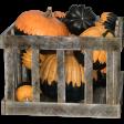 Crate of Pumpkins 01
