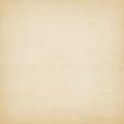 Noah's Ark Solid Paper - Paper #8