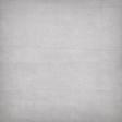Noah's Ark Solid Paper - Paper #12