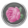 Rose Flair