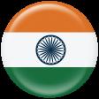 India Flag Flair Brad