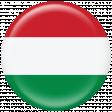 Hungary Flag Flair Brad