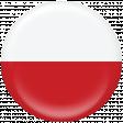 Poland Flag Flair Brad