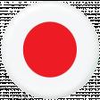 Japan Flag Flair Brad