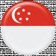 Singapore Flag Flair Brad