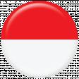 Indonesia Flag Flair Brad