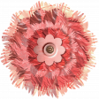 Fluffy 2-toned Pink Layered Flower