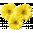 @Sas_Scrapkit_FloralSummer_Element05