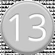 Grey Pleather Number 13