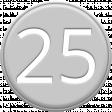Grey Pleather Number 25