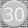 Grey Pleather Number 30