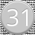 Grey Pleather Number 31
